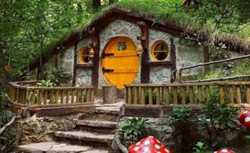 İstanbul Çıkışlı Abant Ormanya Maşukiye Doğa Turu 2 Gün 1 Gece Otel Konaklamalı